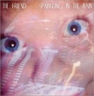 Friend - Sparkling In The Rain CDS (VG+/VG+) -indie rock-
