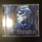 Entwine - The Treasures Within Hearts CD (VG/VG+) -gothic metal-