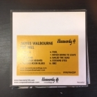 James Walbourne - The Hill PROMO CD (VG+/M-) -folk rock-