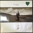 Tanita Tikaram - Ancient Heart LP (VG/G) -folk pop-