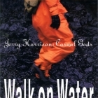 Jerry Harrison Casual Gods - Walk On Water CD (M-/M-) -synthpop-