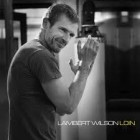 Lambert Wilson - Loin CD  (M-/M-) -pop-